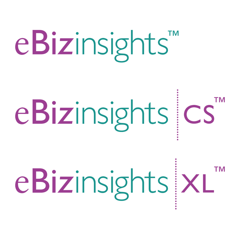 eBizinsights vector logo