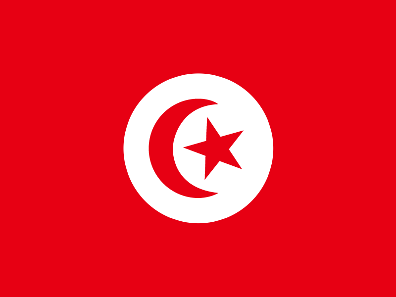 Flag of Tunisia vector