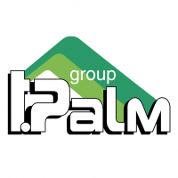 T Palm Group vector