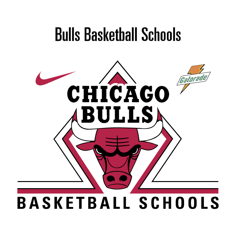Bull Basketball Schools vector