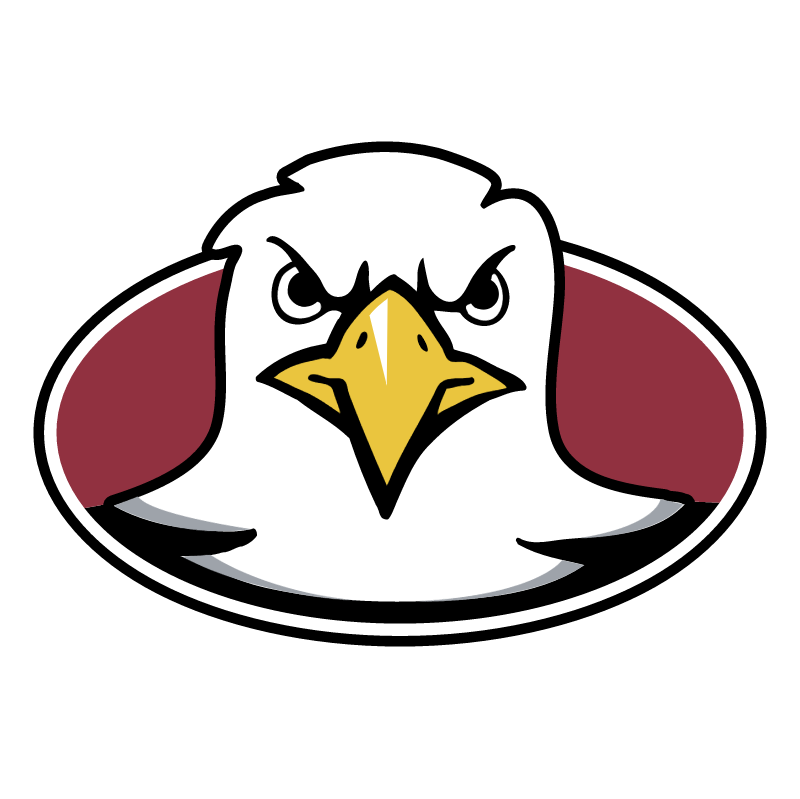 Boston College Eagles 73901 vector