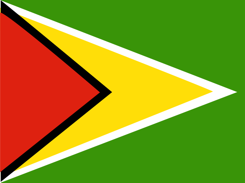 Flag of Guyana vector