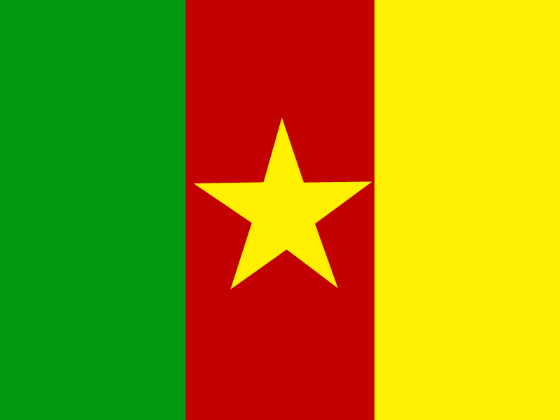Flag of Cameroon vector logo