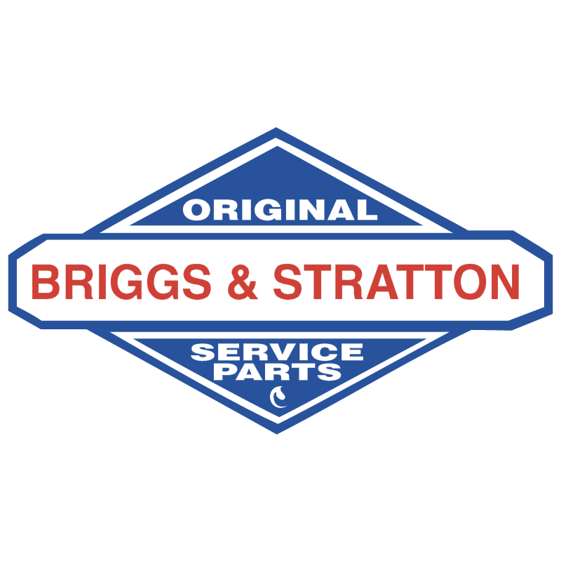 Briggs & Stratton 10404 vector