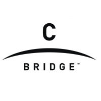 C bridge vector