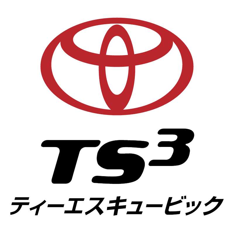 TS3 Card vector logo