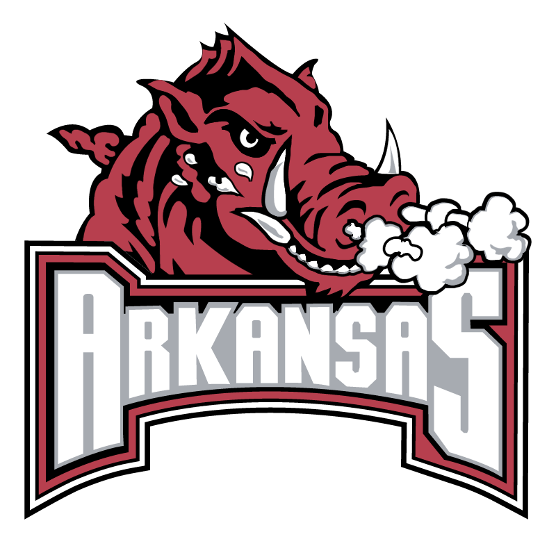Arkansas Razorback 73905 vector