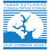 Tamar Estuaries Forum vector