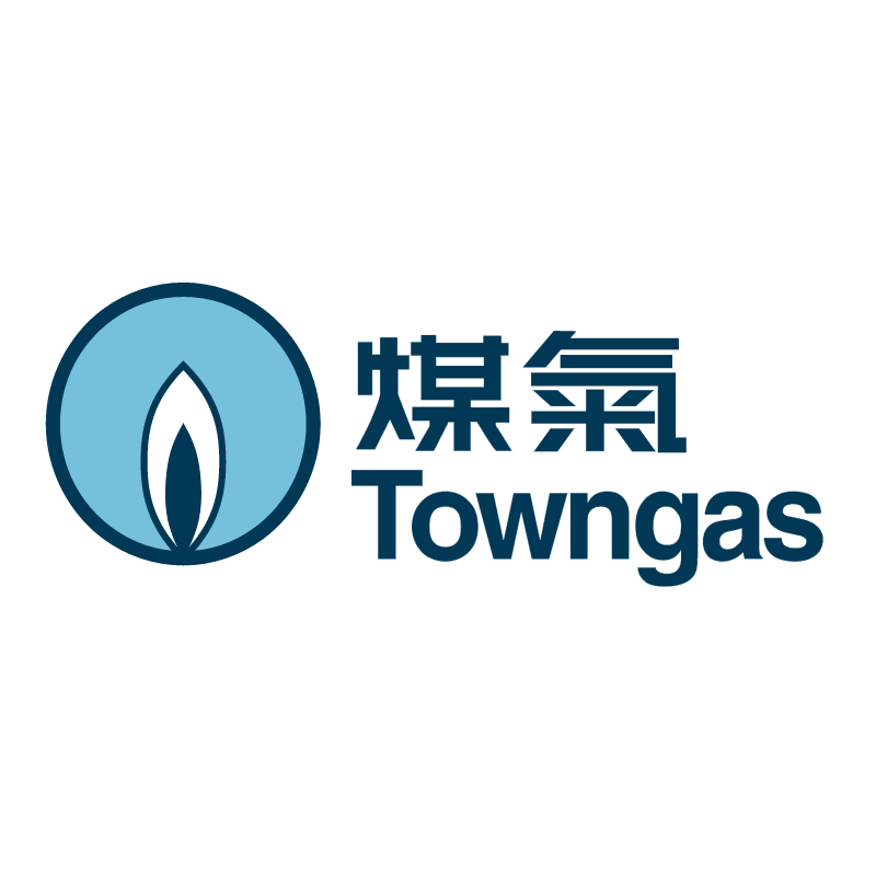 Towngas vector