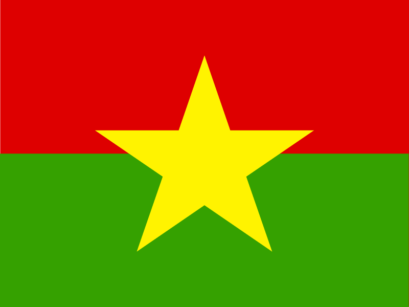 Flag of Burkina Faso vector