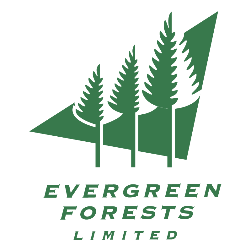 Evergreen Forests vector logo