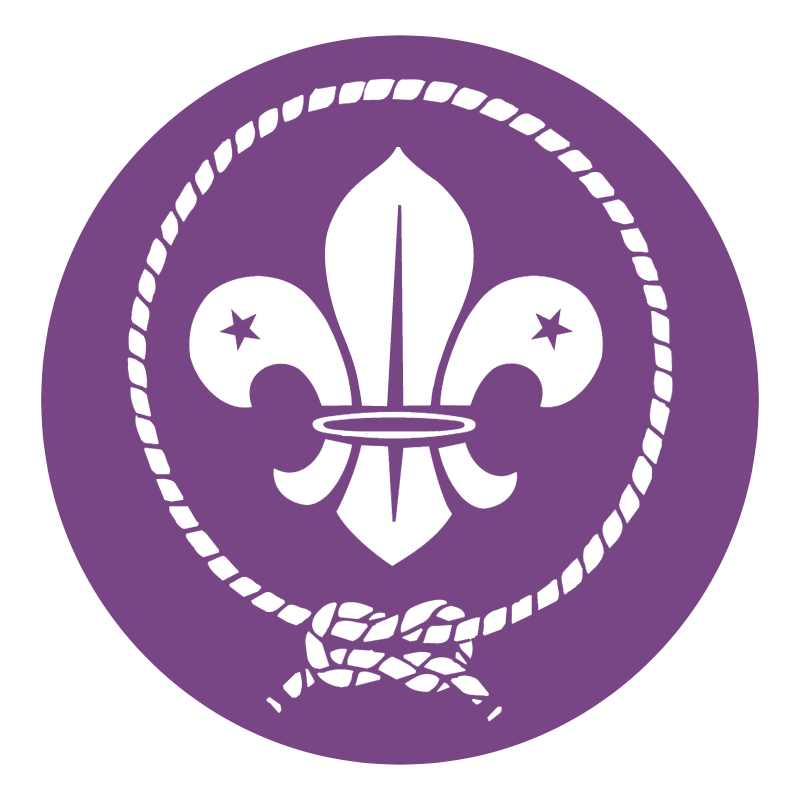 World scout movement vector