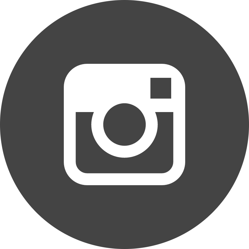 Instagram circle vector