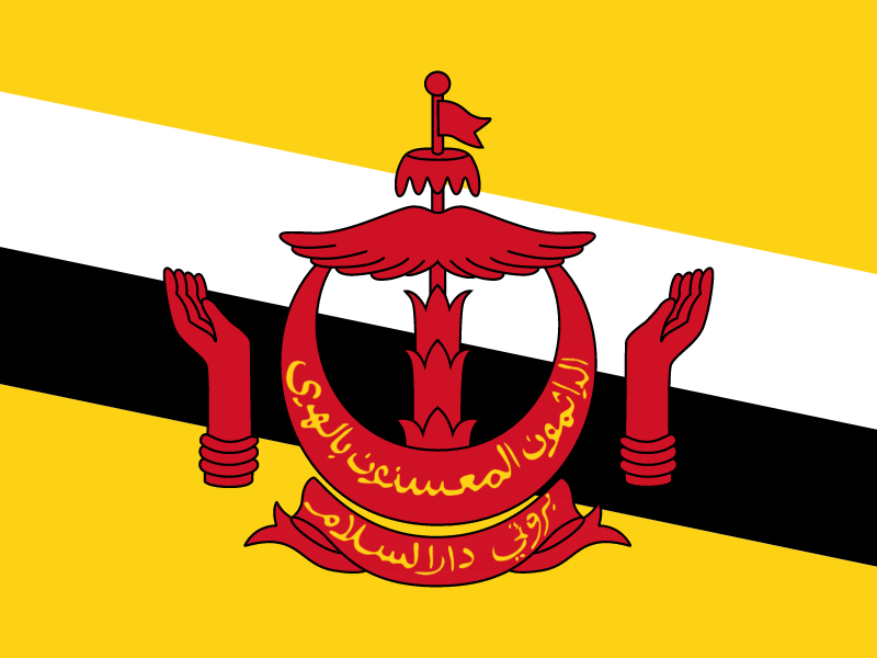 Flag of Brunei Darussalam vector