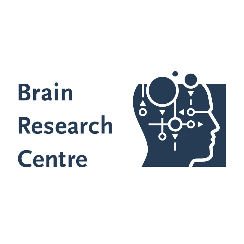 Brain Research Centre vector