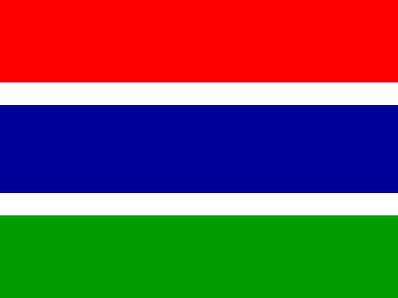 Flag of Gambia vector