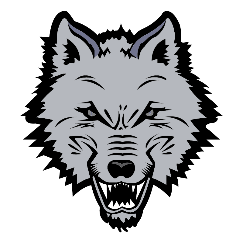 New England Sea Wolves vector