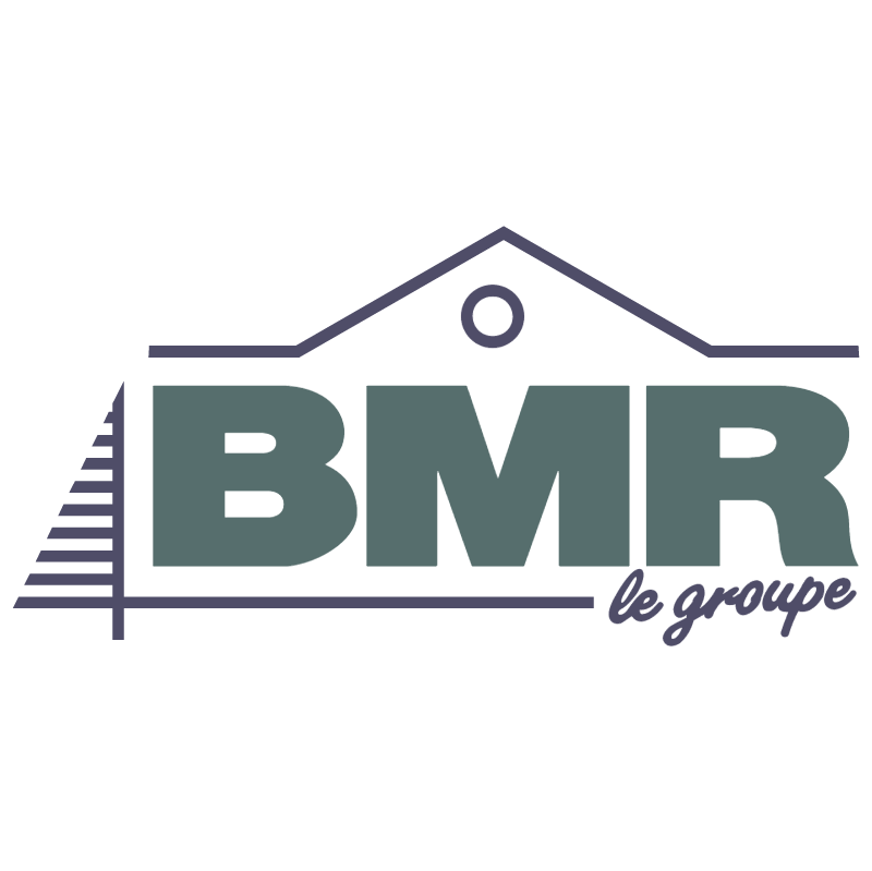 BMR le Groupe vector