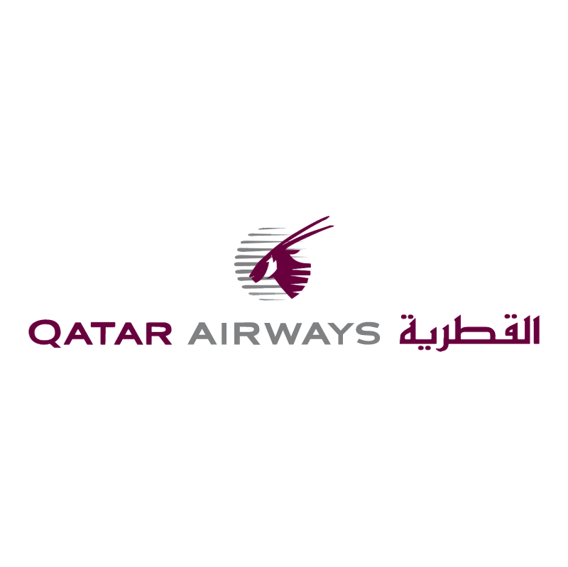 Qatar Airways vector