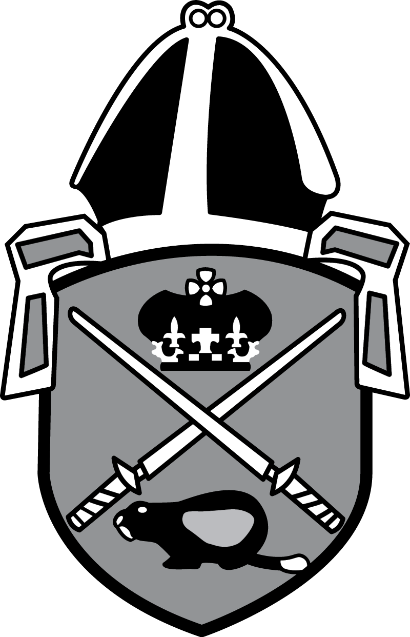 anglican church vector