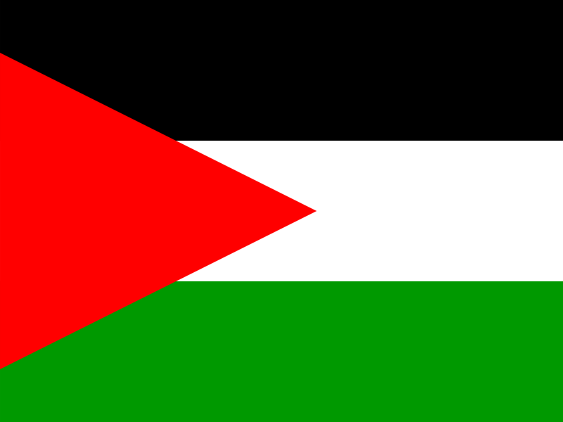 Flag of State of Palestine vector