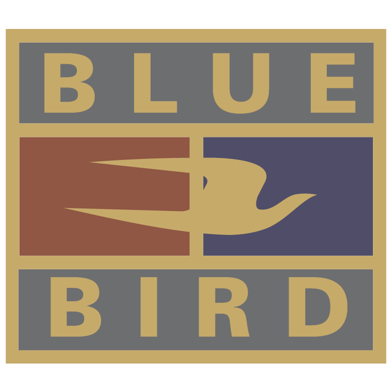 Blue Bird 905 vector