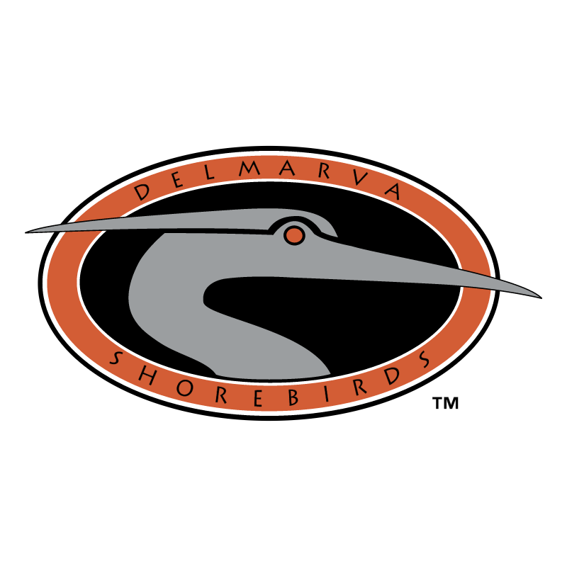 Delmarva Shorebirds vector logo