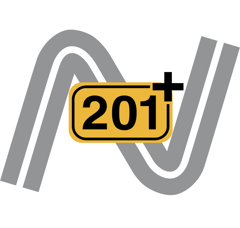 Project N201 plus vector logo