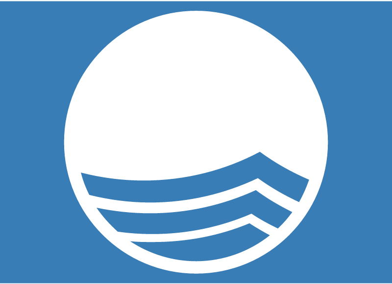 BLUE FLAG vector