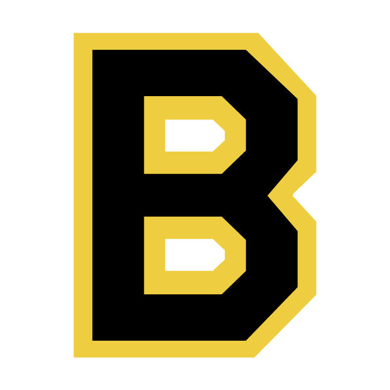 Boston Bruins 76876 vector