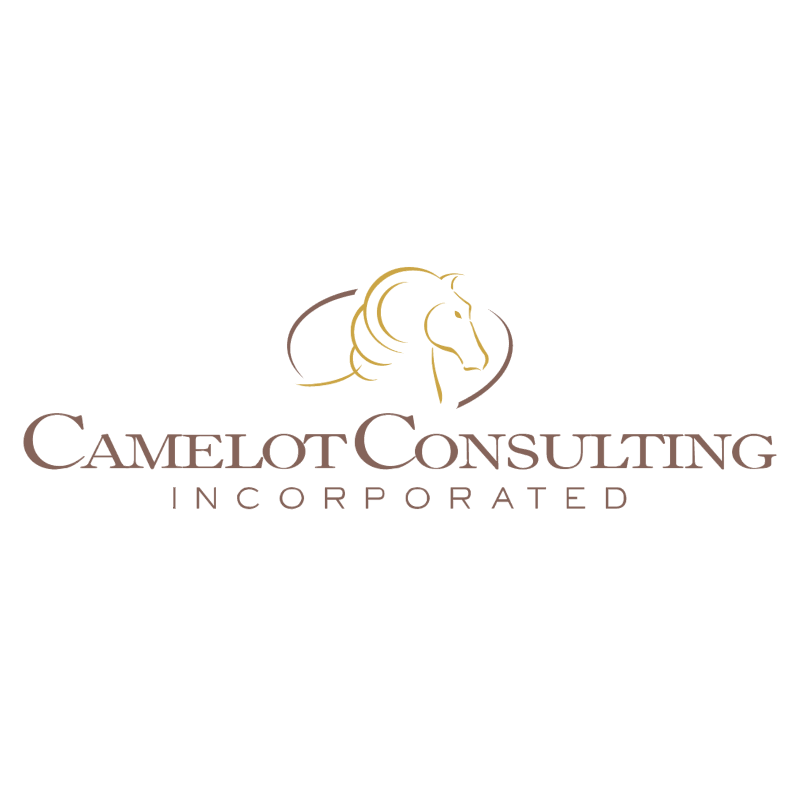 Camelot Consulting vector