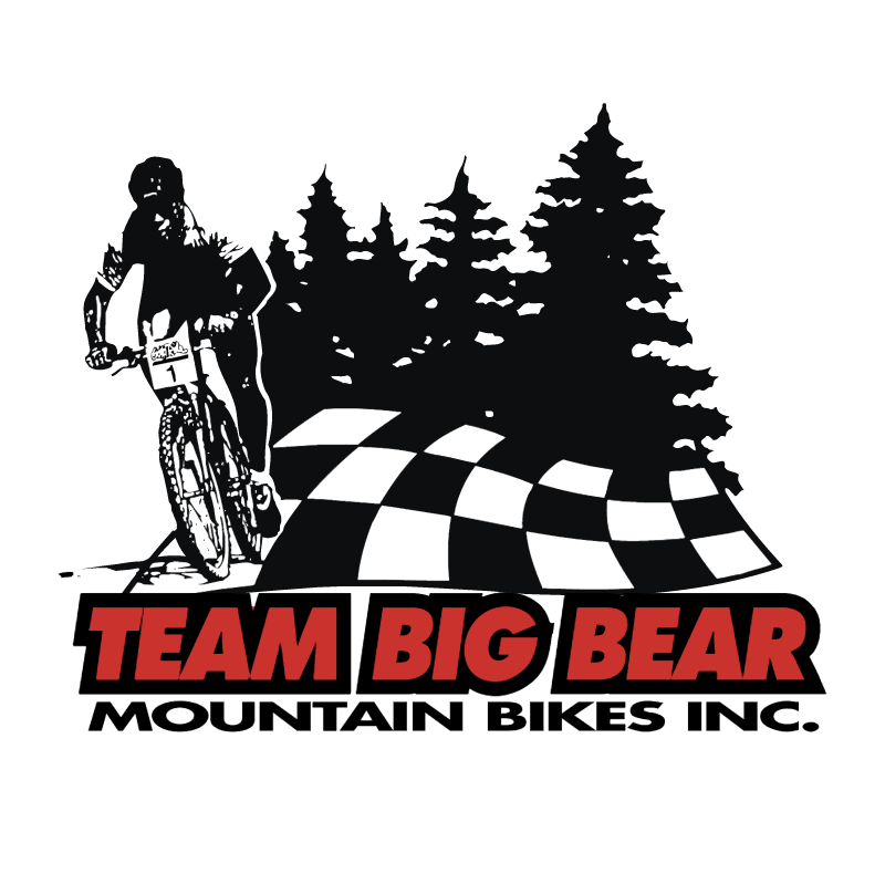 Team Big Bear vector
