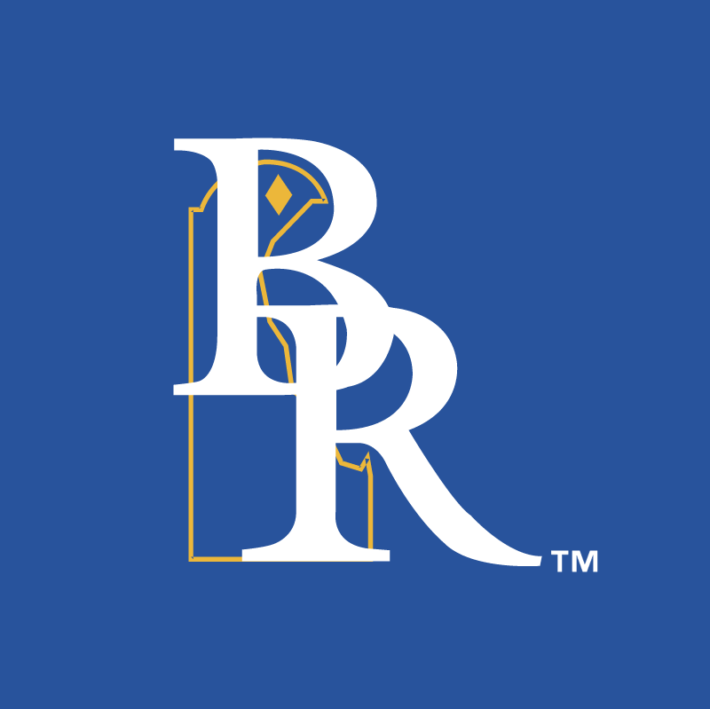 Wilmington Blue Rocks vector