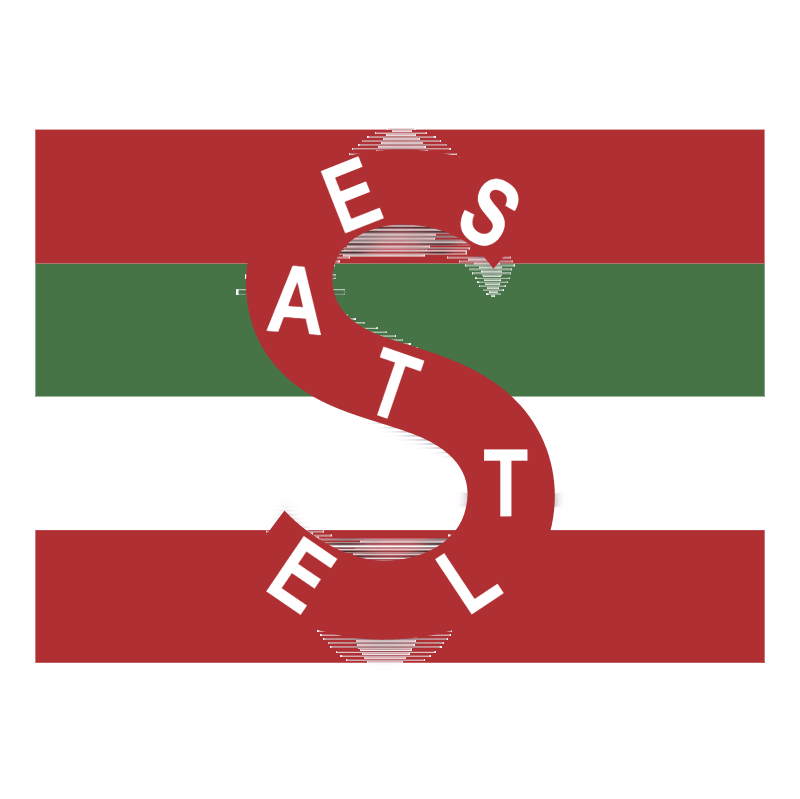 Seattle Metropolitans vector