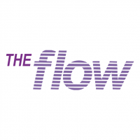 The Flow vector