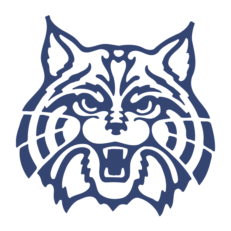 Arizona Wildcats 75974 vector