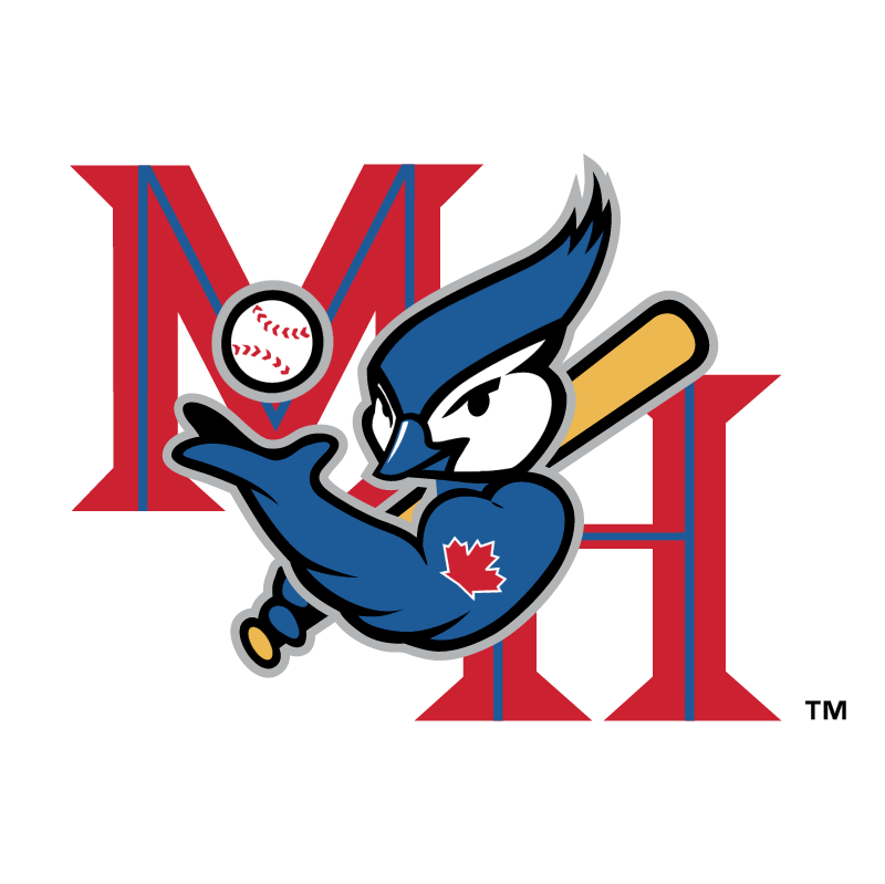 Medicine Hat Blue Jays vector