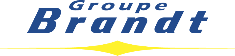 Brandt Group logo vector