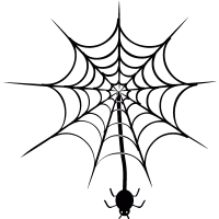 Spider hanging of  web vector