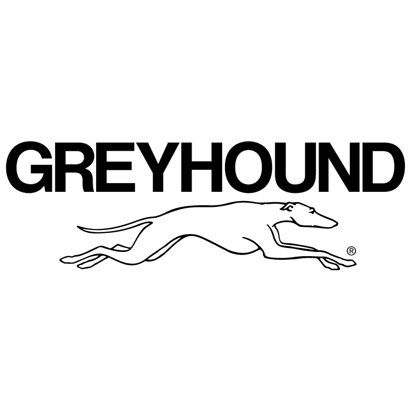 Greyhound Bus Lines vector