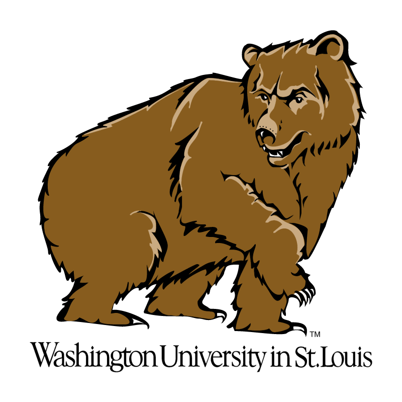 Washington Bears vector