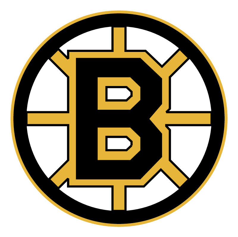 Boston Bruins 76875 vector
