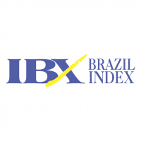 IBX Brazil Index vector