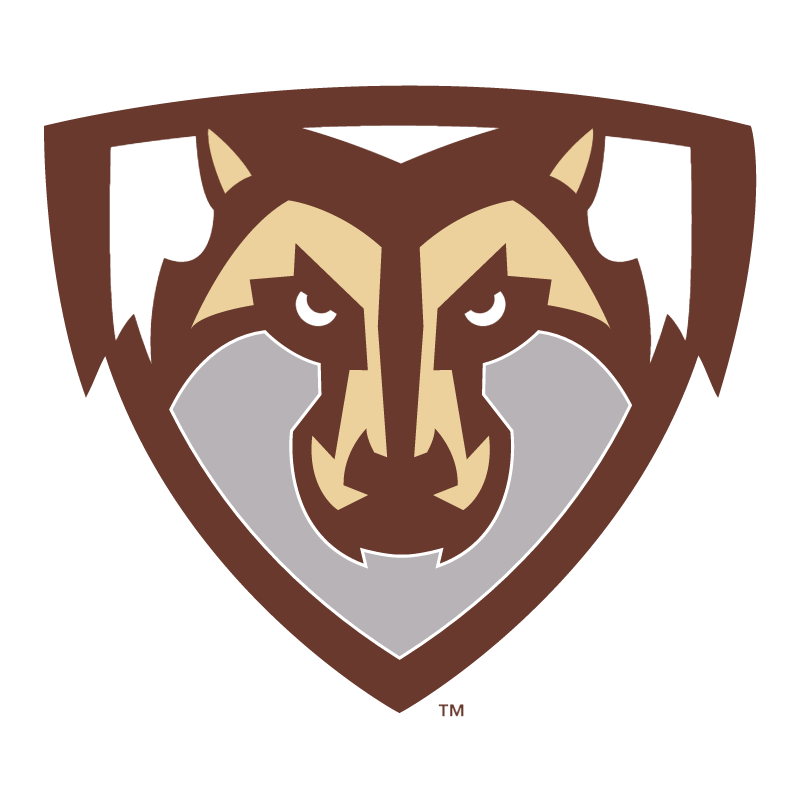St Bonaventure Bonnies vector