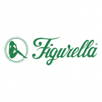 Figurella vector