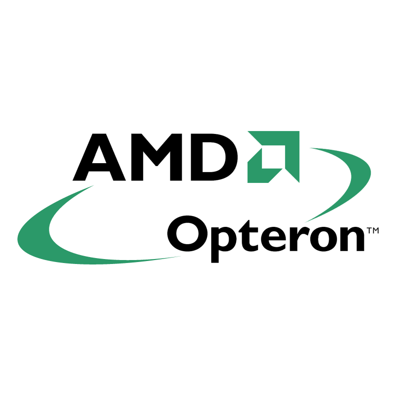 AMD Opteron 66294 vector