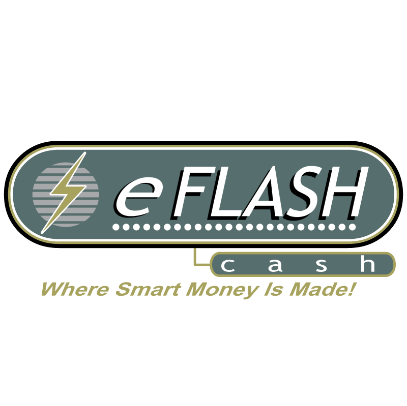 eFlash Cash vector