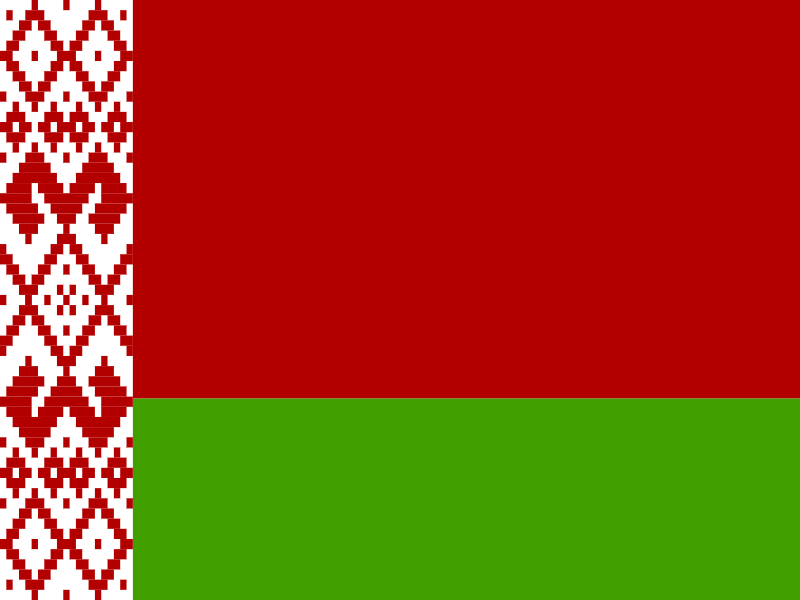 Flag of Belarus vector
