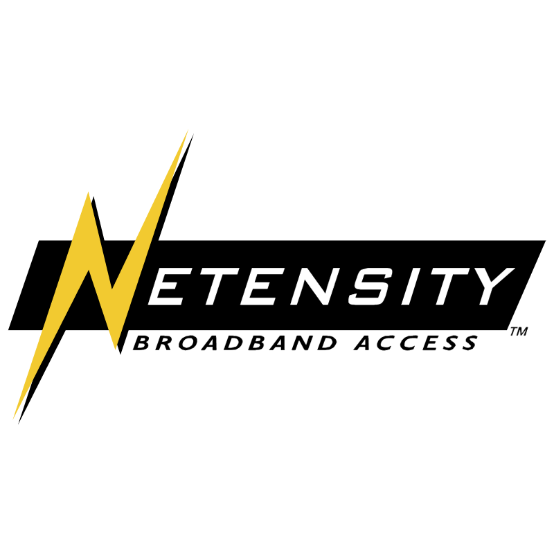 Netensity vector logo