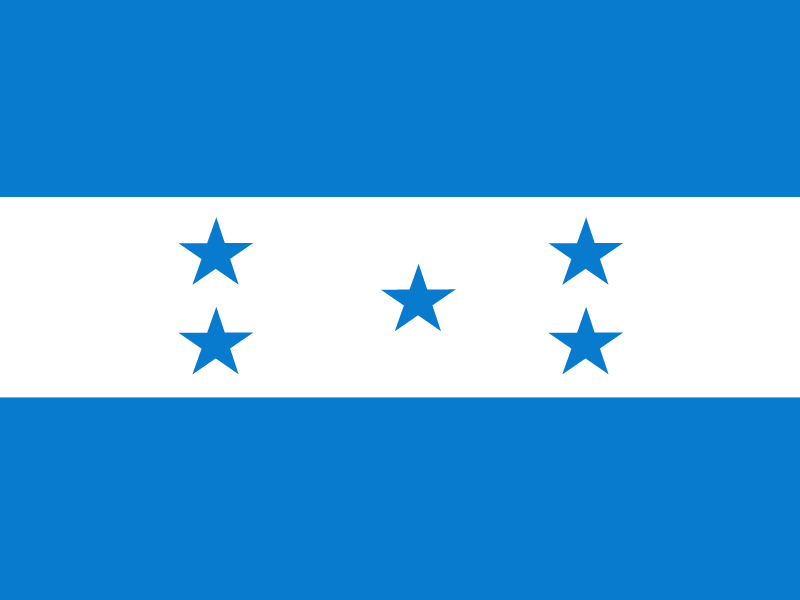 Flag of Honduras vector